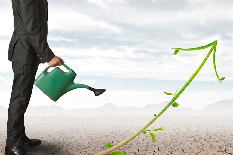 business really green 5 ways tell