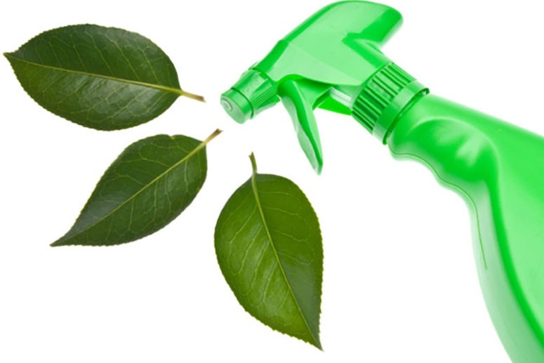 Eco Friendly Office Cleaning Products